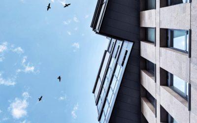 Pourquoi placer son argent dans l'immobilier en 2020 ?